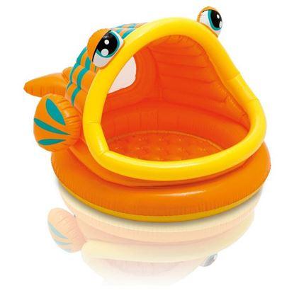 Obrázek Bazén Lazy Fish Shade