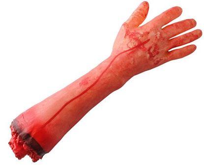 Obrázek Uříznutá lidská ruka