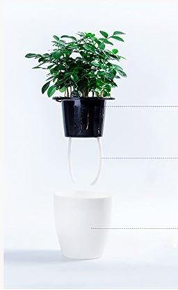 Obrázek Samozavlažovací květináč - velký