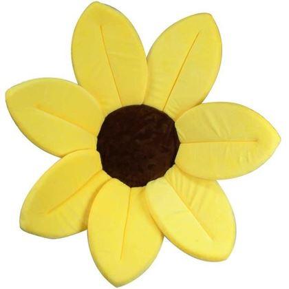 Obrázek z Koupací květina