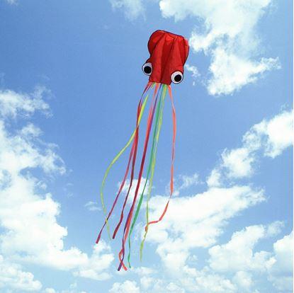 Obrázek Létající chobotnice