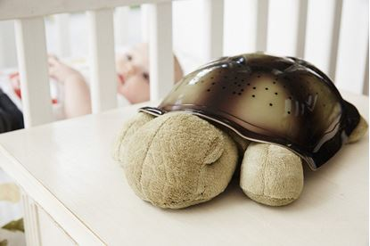 Obrázek Noční svítící želvička - hnědá