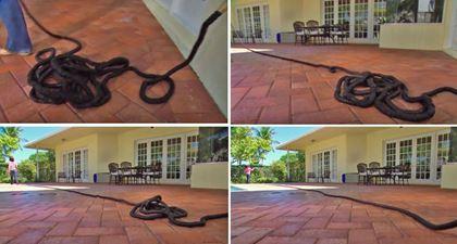 Obrázek z Smršťovací zahradní hadice Profi 45 m