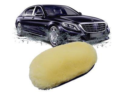 Obrázek z Houba na mytí auta