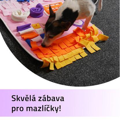 Obrázek Hrací deka pro mazlíčky