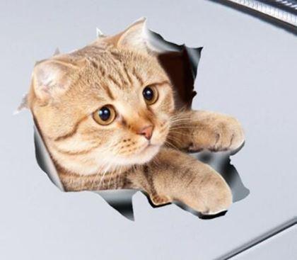 Obrázek z Nálepka - kočka