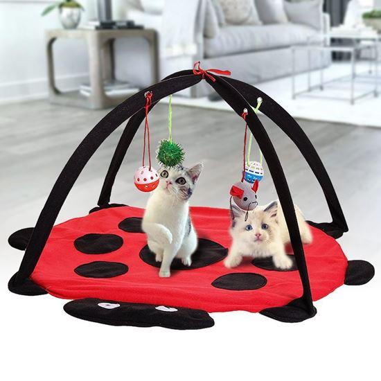 Obrázek z Hrací podložka pro kočky