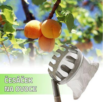 Obrázek Česáček na ovoce