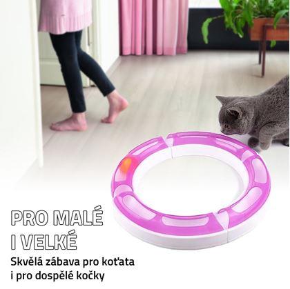 Obrázek z Koulodráha pro kočky
