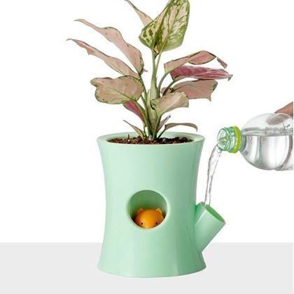 Lití vody do samozavlažovacího květináče
