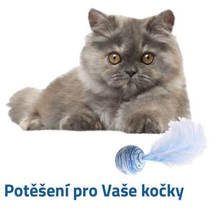 Míček pro koťata
