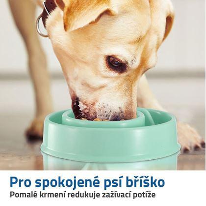 potřeby pro psy