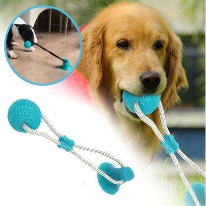 Obrázek Hračka pro psy na čištění zubů