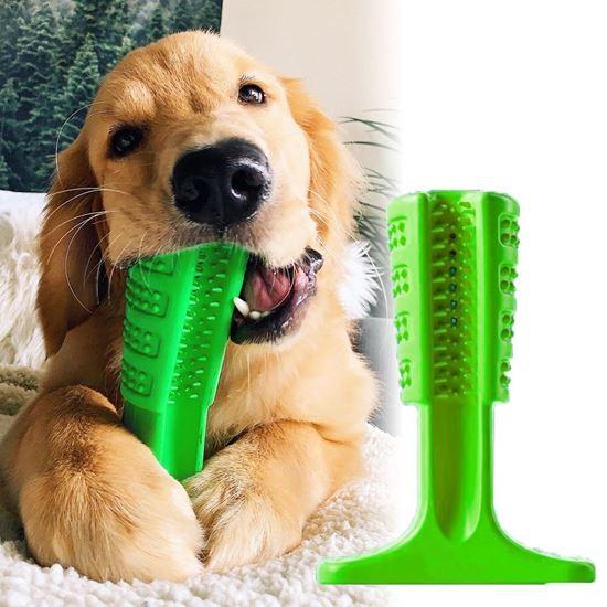 zubní kartáček pro psy