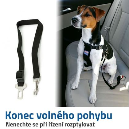 bezpečnostní pás pro psa