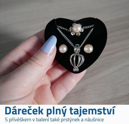 Perla v perlorodce